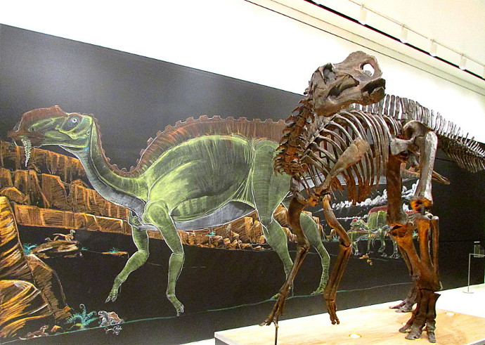 Our Visit To The NJ State Museum 2014