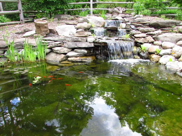 Our Visit To Reeves Reed Arboretum