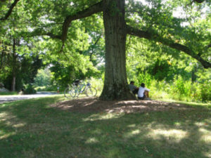 Our Visit To Duke Farms Somerset County Destinations NJ Free And Inexpensive Places