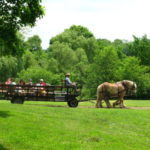 Our Visit To Howel Living History Farm Hunterdon County Destinations