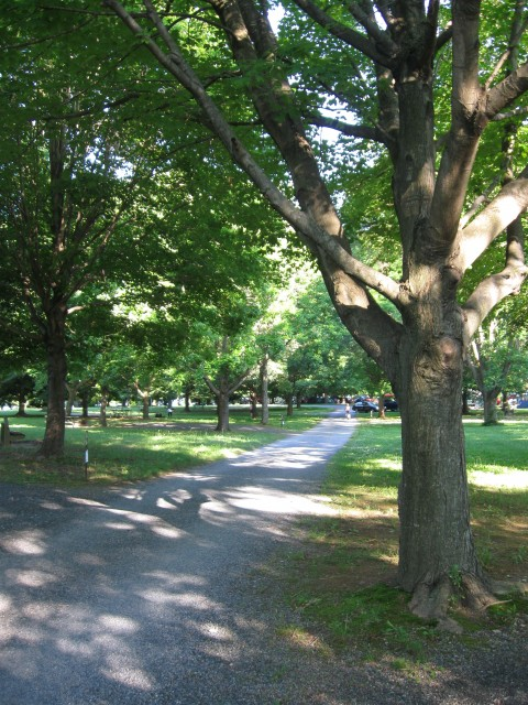 Our Visit To Spruce Run and Round Valley Hunterdon County Destinations