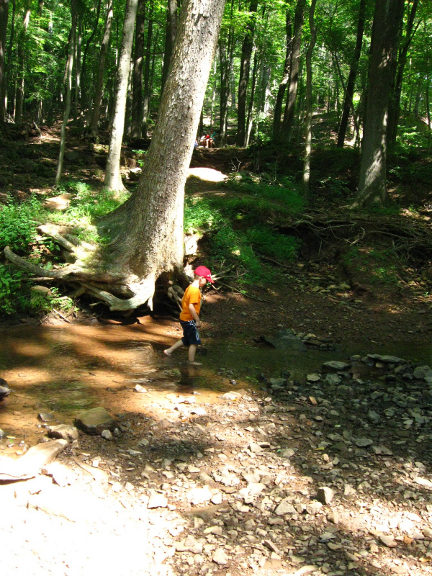 Our Visit To Watchung Reservation Union County Destinations