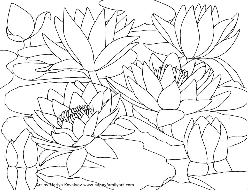 Free coloring pages of water lily flower