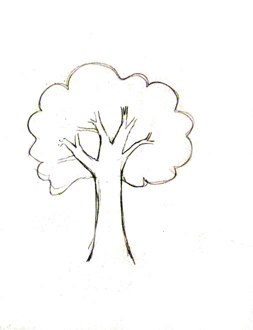 Charmant How To Draw A Tree Tutorial