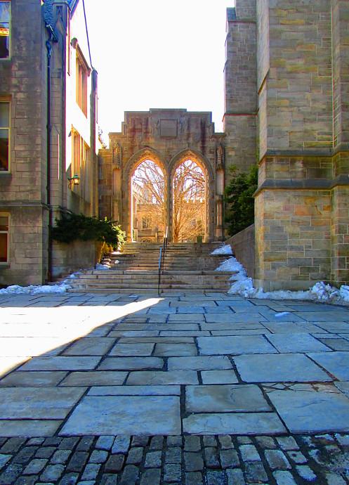 Our Visit To Princeton University and Princeton Art Museum