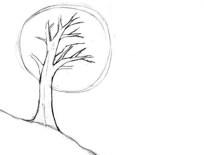 How To Draw A Tree Tutorial