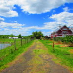 Our Visit To Terhune Orchards In Princeton Mercer County Destinations