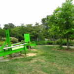 Our Visit To Rutgers Gardens