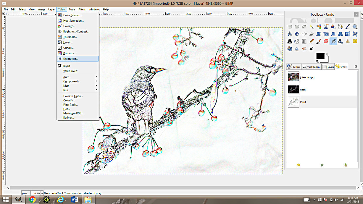 Line Art Using Gimp : Making coloring pages from photographs using gimp