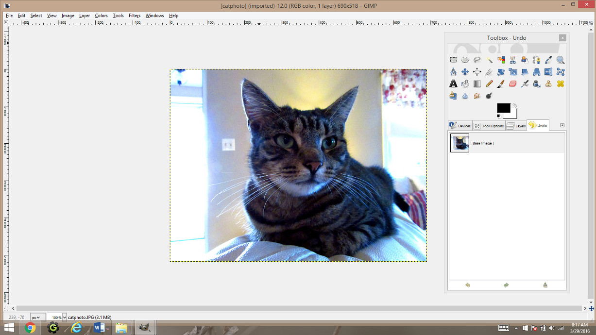 Making Coloring Pages From Photographs Using Gimp