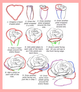 How to draw roses