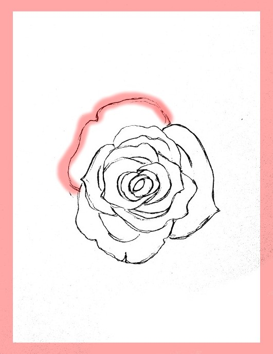 How to draw roses how to draw roses ccuart Image collections