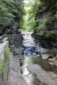 Our Visit To Robert H. Treman State Park in Ithaca
