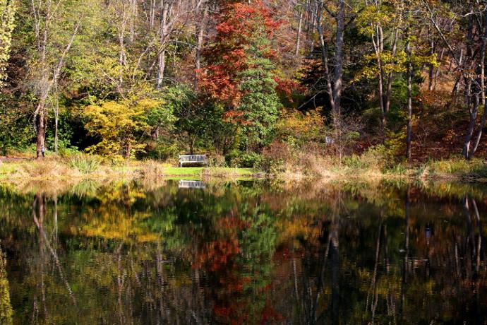 Our Visit To Leonard J Buck Garden