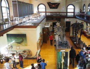 Our Visit To Rutgers Geology Museum