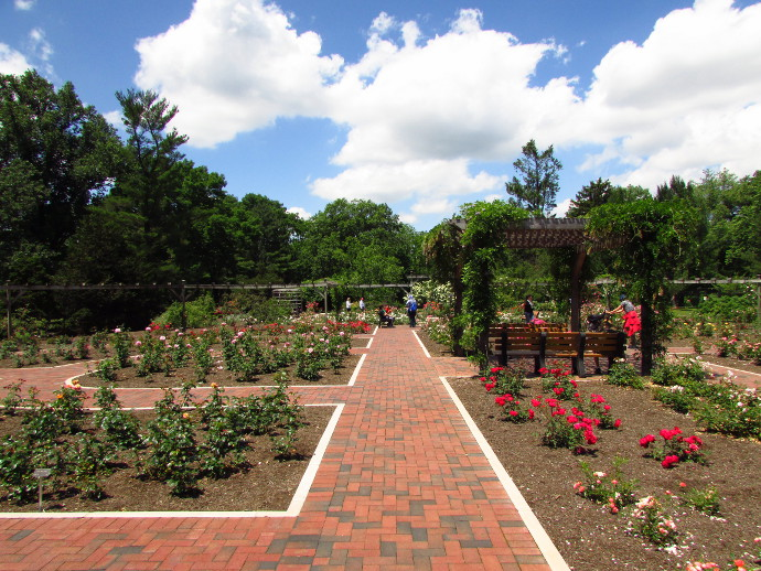 Our Visit To Colonial Park New Jersey