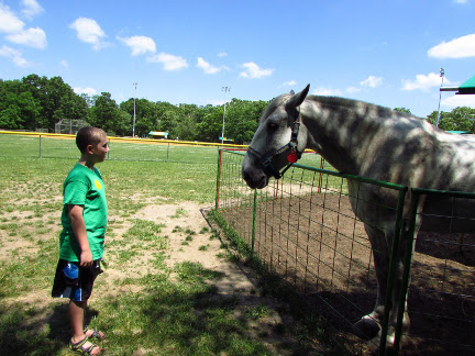 Our Visit To Green Meadows Farm