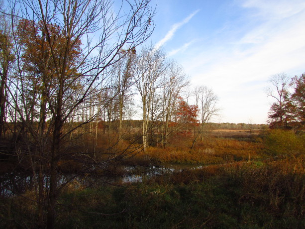 Our Visit To Environmental Education Center Somerset County Destinations