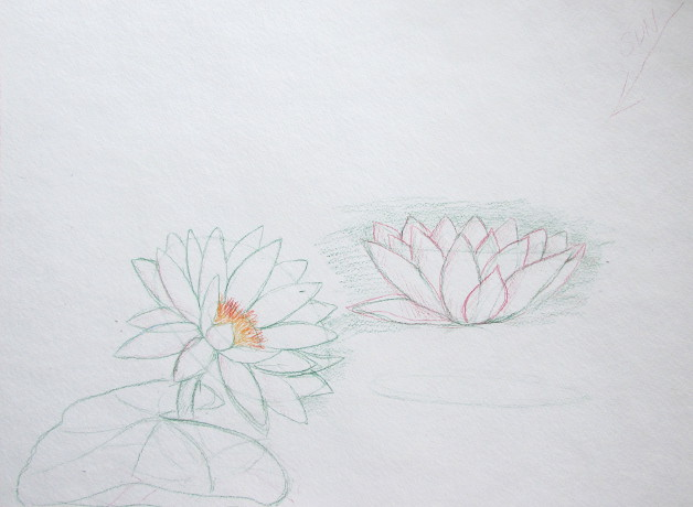 Watercolor Water Lilies Painting