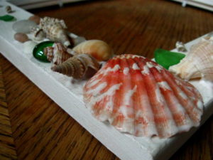 Seashell Picture Frame Tutorial