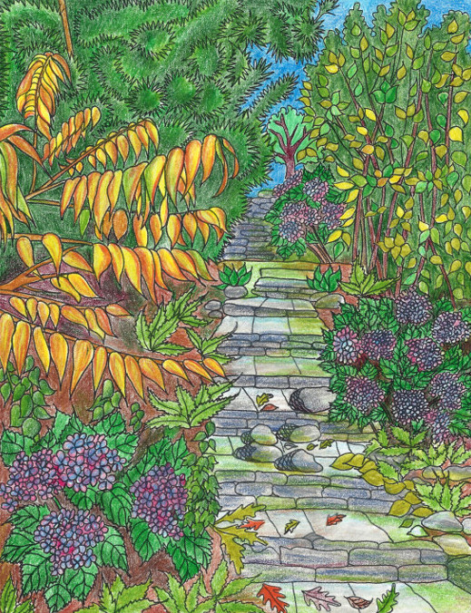 Coloring pages nature coloring book