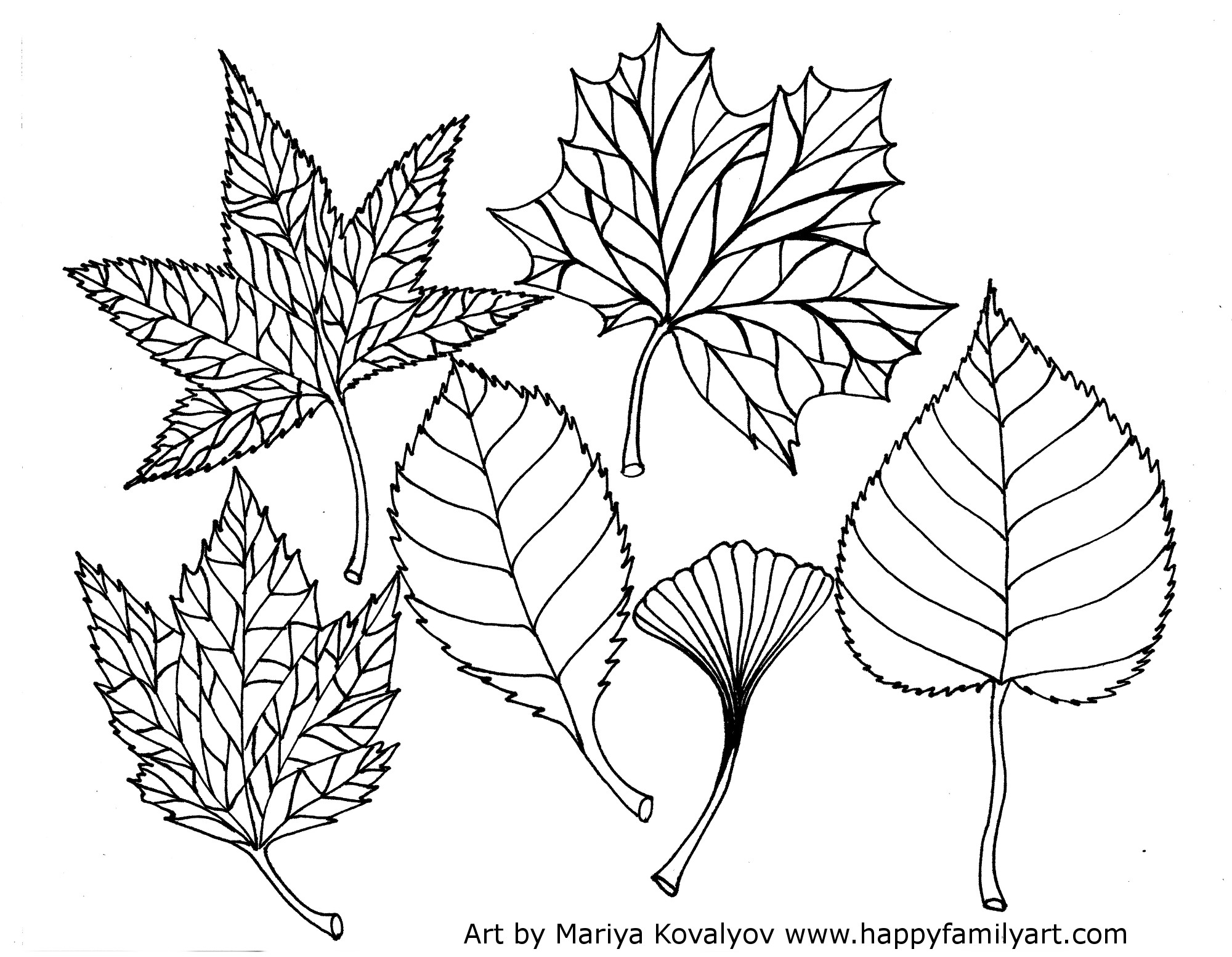 Free Leaves Coloring Pages To Print, Download Free Clip Art, Free ... | 1553x2000