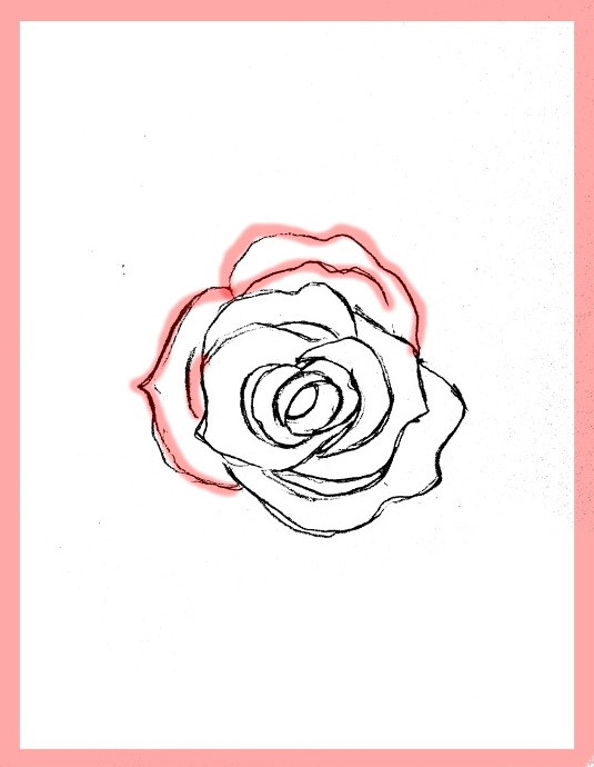 Draw a rose step by step in pencil dating