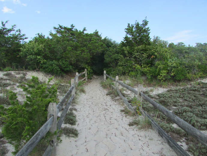 Our Visit To Island Beach State Park