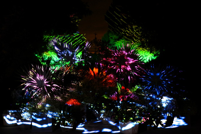 Our Visit To Longwood Gardens Nightscapes 2016
