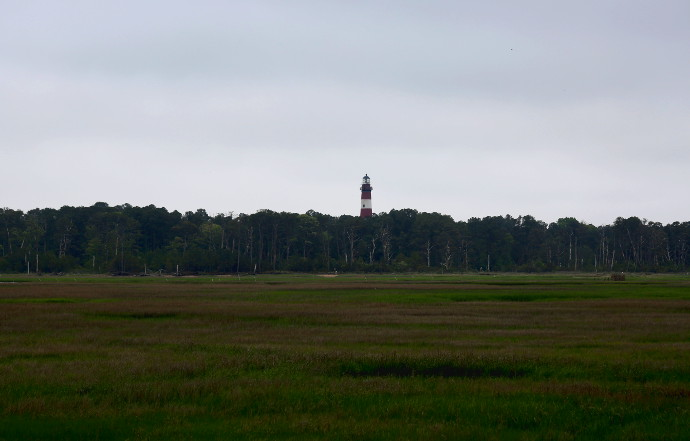 Our Visit To Chincoteague Island
