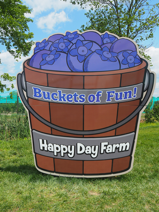 Our Visit To Happy Day Farm